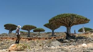 توزيع سلال غذائية في جزيرة سقطرى