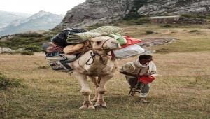 ناشط سقطري يلخّص واقع الأرخبيل بعد عام من انقلاب مليشيا الإمارات